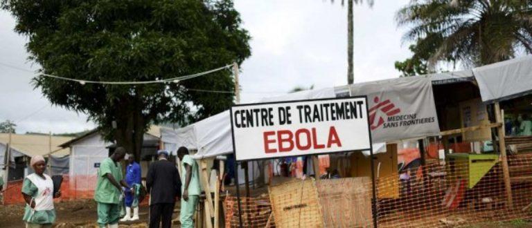 Article : L'Afrique face à Ebola : les vérités qui blessent